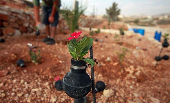 You've Got To See How This Palestinian Woman Uses Israeli Army Tear Gas Grenades To Create Inspirational Garden.