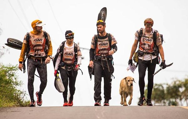 The Stray Dog Joined The Extreme 430-Mile Race. This Story Turned Out Beautiful.