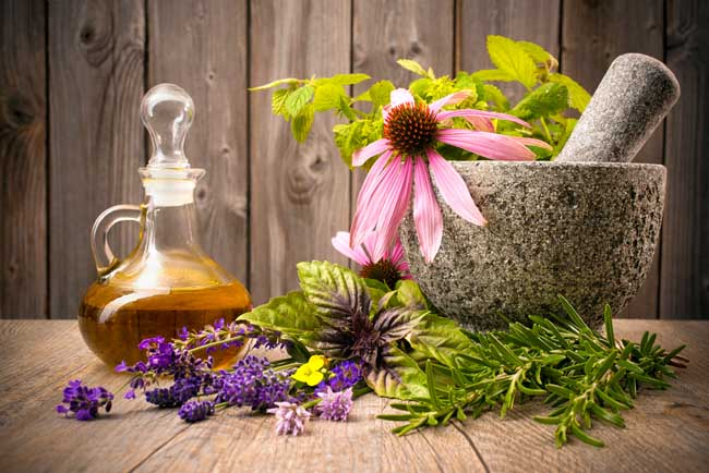 20 Herbs and Plants You Didn't Know Were Medicinal